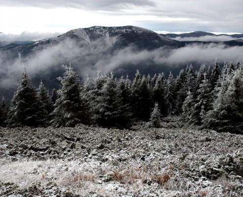 Muntele Goru