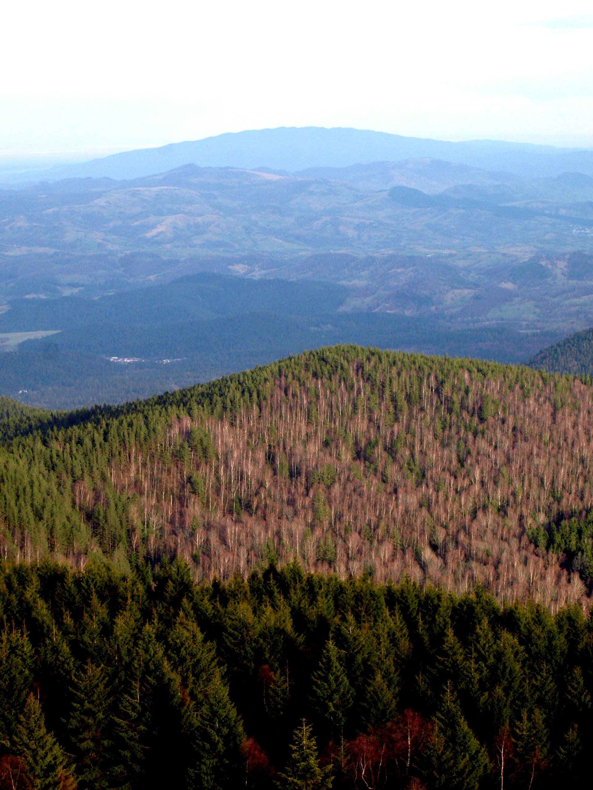 Munții Vrancei, Magura-Odobesti
